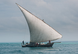 Dhow off the coast of Zanzibar